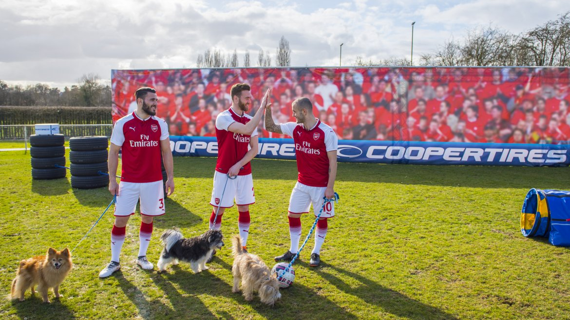 arsenalcoopertiresdogs_14edit.jpg