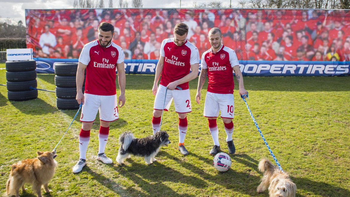 arsenalcoopertiresdogs_16edit.jpg