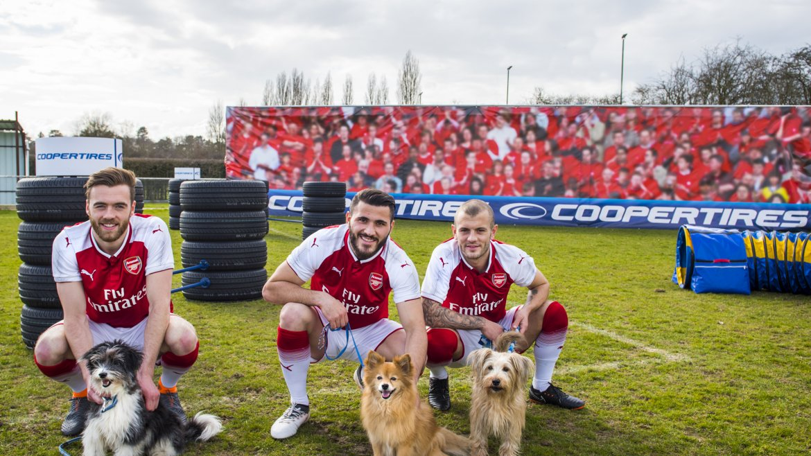 arsenalcoopertiresdogs_5edit.jpg