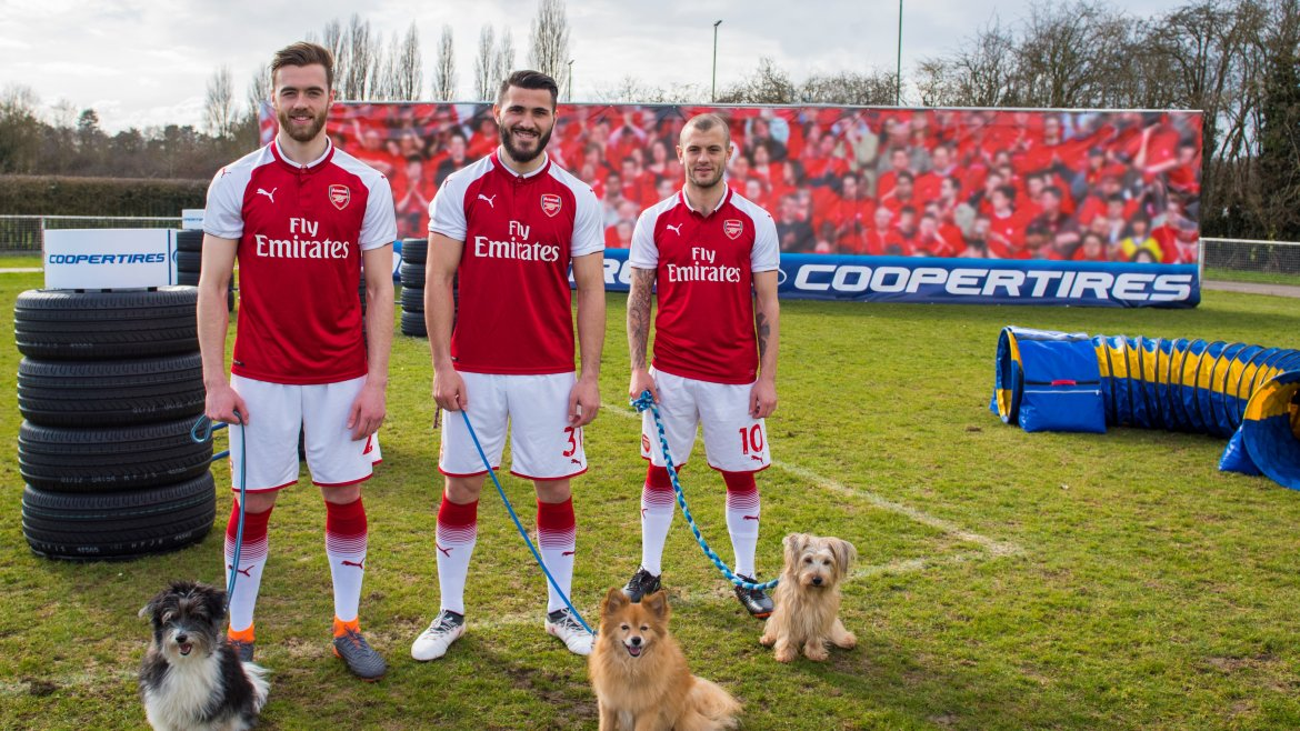 arsenalcoopertiresdogs_1edit (2).jpg